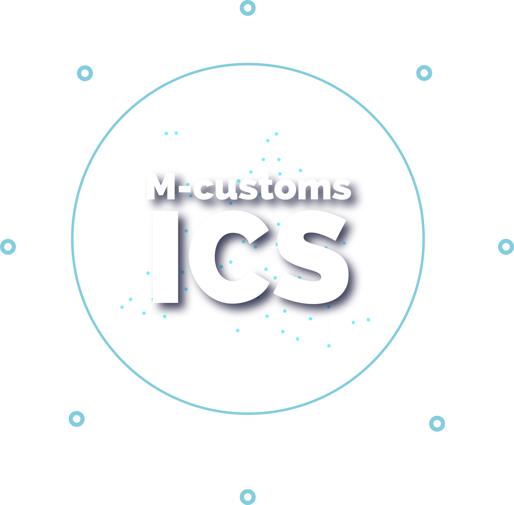 M-CUSTOMS, PLATFORM ICS